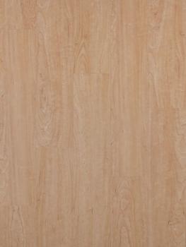 PODIUM PRO 30 Maple Natural 91,44x15,24 cm