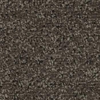 Coral Classic 4764 schoonloopmat 55 x 90 cm  stuk