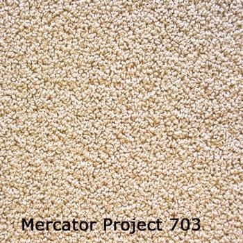 MERCATOR PROJECTTAPIJT  >> Prijs per m1