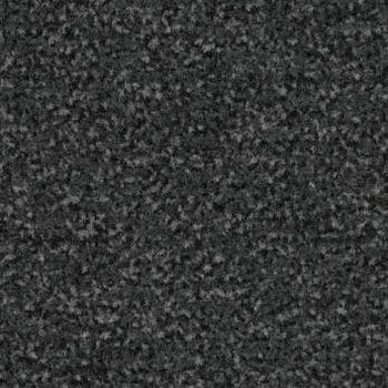 Coral Classic 4721 schoonloopmat 55 x 90 cm  stuk