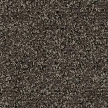 Coral Classic 4764 schoonloopmat-90 x 155 cm  stuk